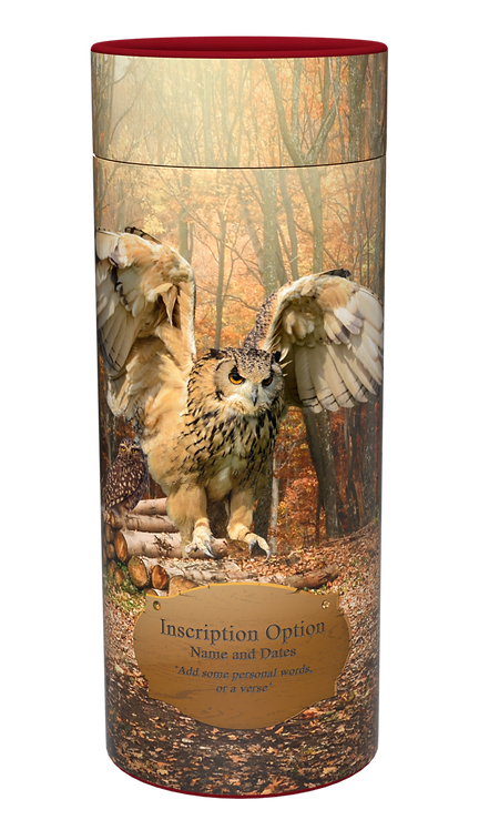 Custom Personalised Cremation Ashes Casket Scatter Tube OWLS