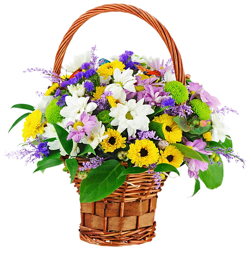 Florist Choice Basket . . starting from