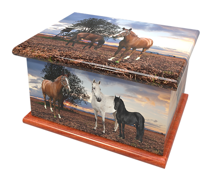 Custom Personalised Cremation Ashes Caskets Containers and Urns HORSES PONY