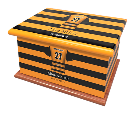 Custom Personalised Cremation Ashes Casket Urn FOOTBALL TEAM ALLOA ATHLETIC