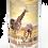 Custom Personalised Cremation Ashes Casket Urn Scenic Landscape AFRICAN SAFARI