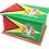 Personalised Custom Cremation Ashes Caskets COUNTRY AND BRITISH COUNTY FLAGS GUYANA