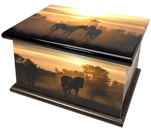 Custom Personalised Cremation Ashes Caskets Containers and Urns BLACK HORSES PONY