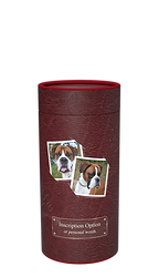 PET Scatter Tube LEATHER (WINE) 1.png