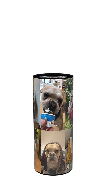 Custom Personalised Pet Cat Dog Animal Cremation Ashes Casket Scatter Tube Photographic