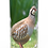 Custom Personalised Cremation Ashes Casket Urn Scenic Landscape GROUSE