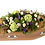 Thumbnail: Rustic Grace . . starting from