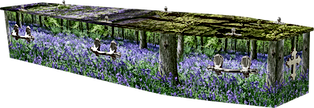 BLUEBELL WOOD.png