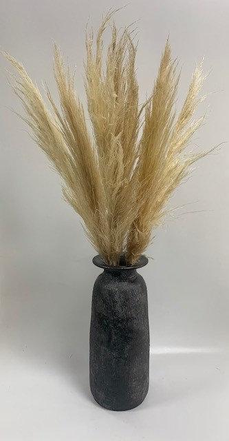 Pampus Grass in a Vase