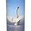 Custom Personalised Cremation Ashes casket Urn Scatter Tube SWANS LAKE BIRDS
