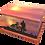 Custom Personalised Cremation Ashes Casket Urn MOTORBIKE TRIUMPH