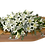 Thumbnail: Just Lilies . . starting from