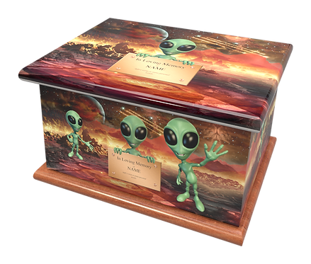 Custom Personalised Cremation Ashes Casket Urn ALIENS LITTLE GREEN MEN SPACE