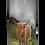 Custom Personalised Cremation Ashes Casket Urn Scatter Tube SCOTTISH HIGHLAND CATTLE