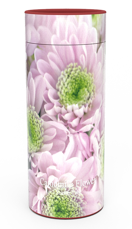 Personalised Custom Bespoke Ashes Scattering Tube Urn for Cremated Remains in four sizes PURPLE CHRYSANTHEMUM