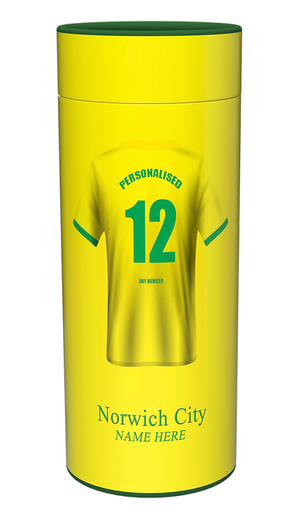 Custom Personalised Cremation Ashes Casket Urn Football Team NORWICH CITY