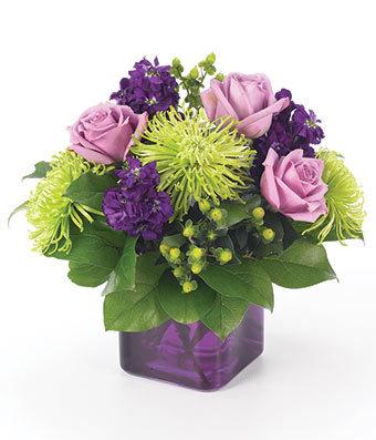 Purple Present