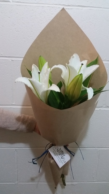 White Lilys