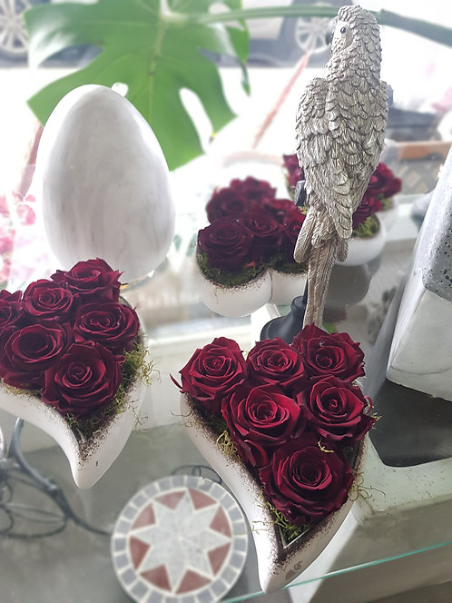 Everlasting Red or Maroon Rose's