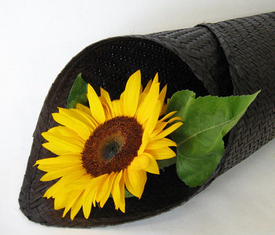 Sunflower Wrapped in Flax