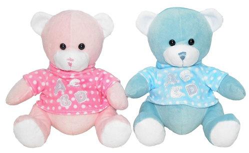 Teddy Bear Blue or Pink