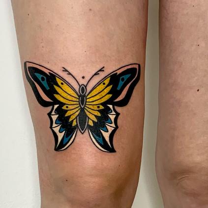 Bold butterfly blackwork colour tattoo b
