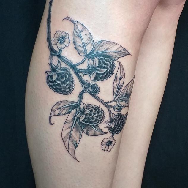 Botanical illustrative tattoo by Gien Am