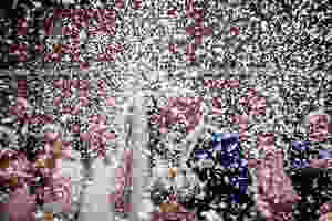 Elsham Hall Wedding Photographer, Lincolnshire Wedding Photographer, Lincolnshire Wedding Photography, Hull Wedding Photographer, Wedding Photographer Lincolnshire, Wedding Photographer Hull, Wedding Photographer Brigg, Brigg Wedding Photographer, Wedding Photographer Scunthorpe, Scunthorpe Wedding Photographer, Wedding Photographer Lincoln, Lincoln Wedding Photographer, Wedding Photographer Grimsby, Grimsby Wedding Photographer, North Lincolnshire Wedding Photographer, Best Wedding Photographer, Best Wedding Photographer Lincolnshire