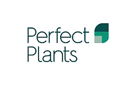 perfect plants.png