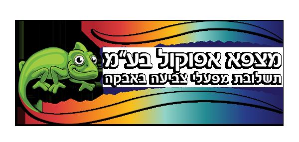 logo_MZPA600WS.png