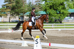 Kathy Thode and Brookside Patch s