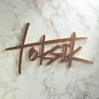 toksik_logo.jpg