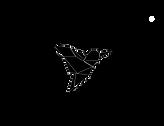 Blackbird Media logo transp.png