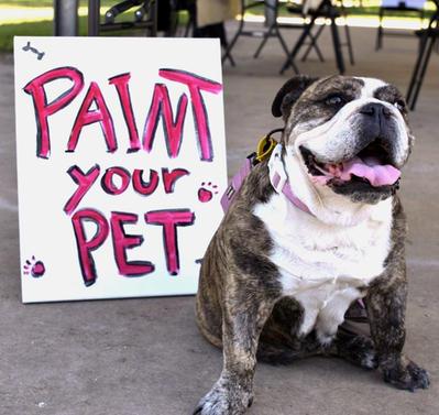 Paint your pet sip n paint concept