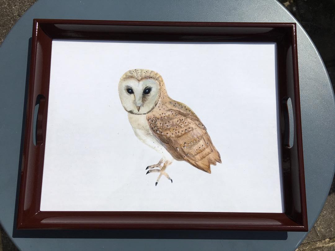 Owl Melamine Tray