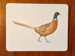 Pheasant Tray/Bin also available