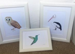 Owl, Pelican and Hummingbird now available.