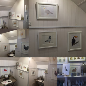And the Solo Exhibition has begun....