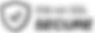 ssl-secure-bw-logo.png