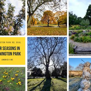 Kennington Park and its seasons.png