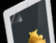Apple Ipad Protector