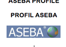 ASEBA (122) ABCL 18-59 PROFILE MEN  (PQT 50)