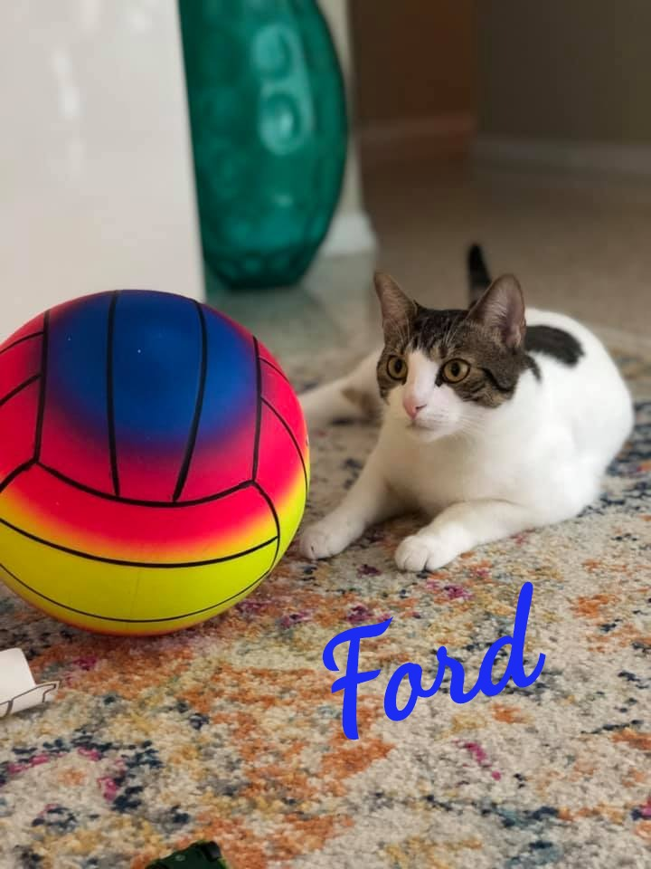 Ford_edited