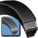 Bando Belts 1.jpg