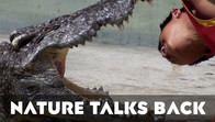 Nature Talks Back