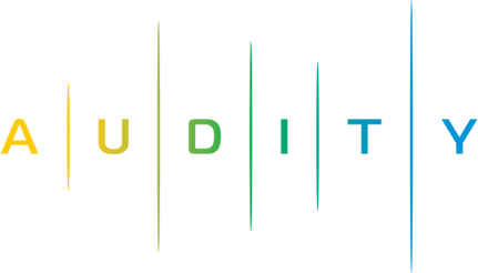 Audity (1).png