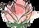 DS Logo_Flower_Color.png