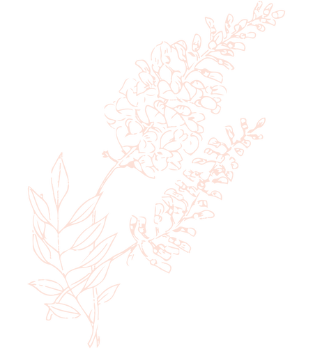 Wisteria2.png
