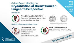 Online Expert Meeting on Cryoablation of Breast Cancer: Surgeon's Perspective