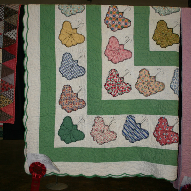 1930's Butterfly Quilt